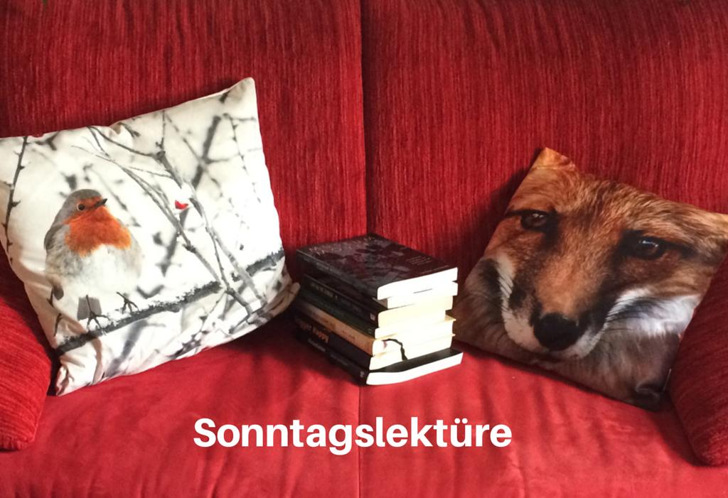 Sonntagslektüre: interne Kommunikation, Augmented Reality, Influencer Marketing und mehr