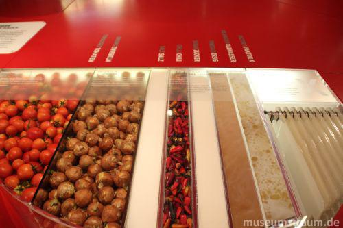 Typisch für die Gestaltung des Museums: Alles, sogar die Bestandteile der Sauce, wird anschaulich präsentiert